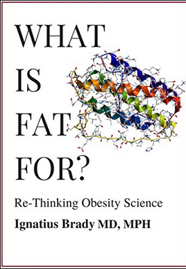 What is Fat For? Book Cover
